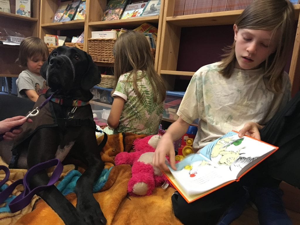 animal assited reading therapy falling rock cafe and bookstore zoey superiorland pet partners